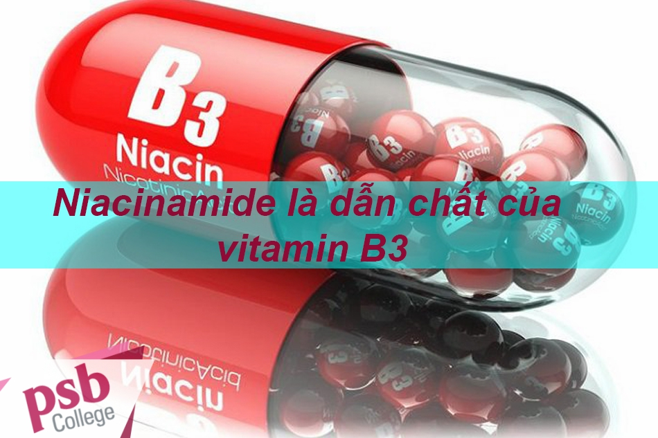 Niacinamide là một dẫn chất của vitamin B3