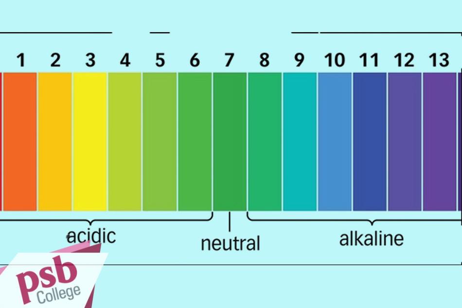 Thang đánh giá mức pH
