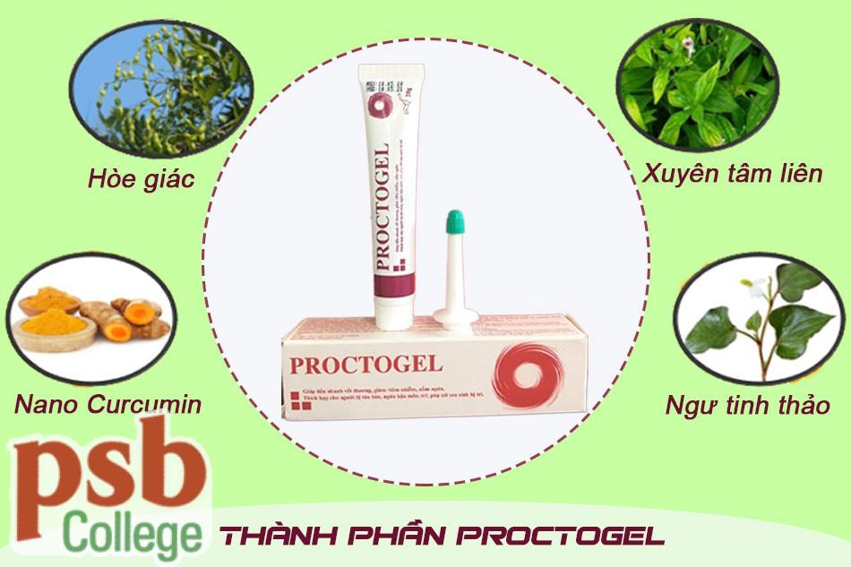 Những thành phần quý của Gel bôi trĩ Proctogel