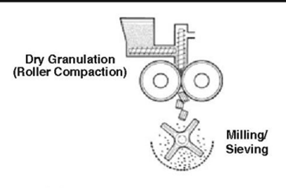 Hình ảnh khối bột chứa dược chất được các trục vít nén sơ bộ và đẩy vào vị trí cán